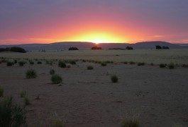 Terra incognita: Namibia