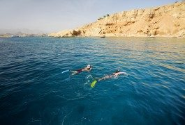 Tunisia ed Egitto: ci vado o non ci vado?