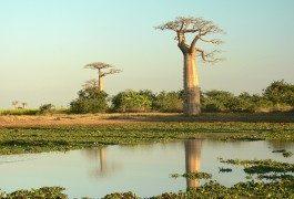 5 meraviglie della natura da ammirare e tutelare