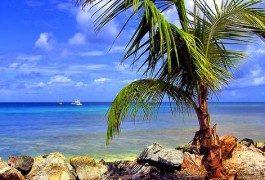 Trinidad e Tobago: il piccolo paradiso dei Caraibi