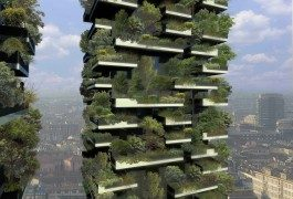 Chi non ha mai sognato una casetta su un albero?