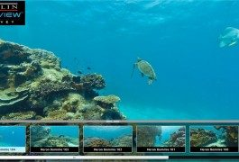 Google, i tentacoli del gigante raggiungono i fondali