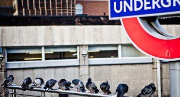 Due passi a Londra con i senzatetto