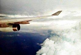 Volatili e incidenti aerei