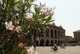 Vivere Verona