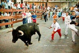 Pamplona? No, i tori invadono gli USA!