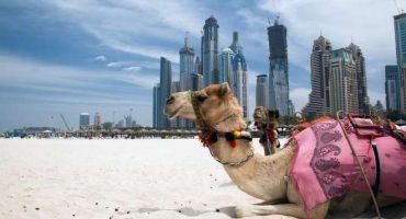 Dubai, futura sede dell'Expo 2020