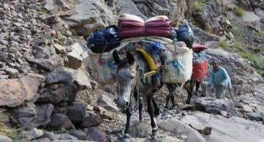 Un itinerario marocchino: da Marrakech ai monti dell'Atlante