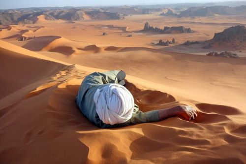 """""""Un meritato riposo nel Sahara"""" di Evan Cole"""