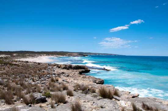 Kangaroo Island ( Australia)