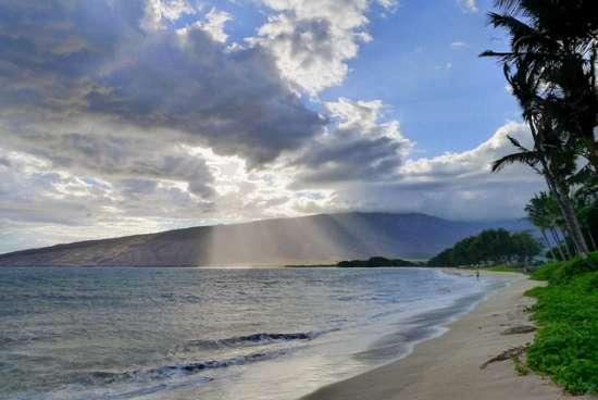 Maui ( Hawaii - USA)