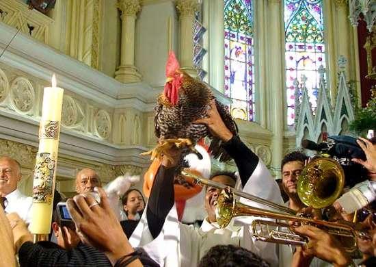 Messa del gallo