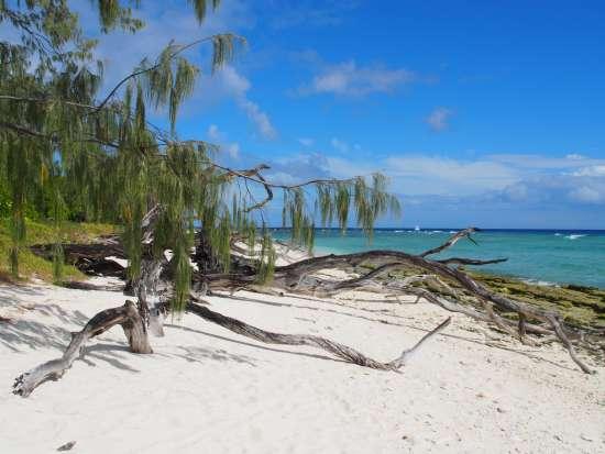 Whitsunday ( Australia)