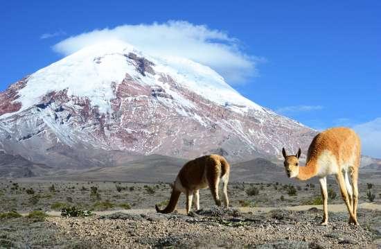 Il vulcano Chimborazo lungo la Via dei Vulcani