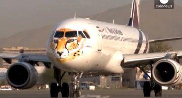 Un aereo leopardato per sensibilizzare l'opinione pubblica