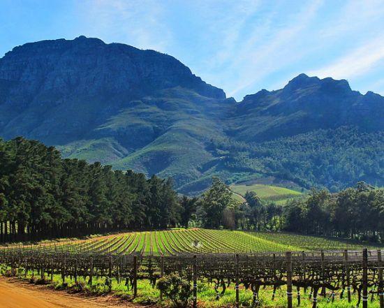 Stellenbosch (Sudafrica)