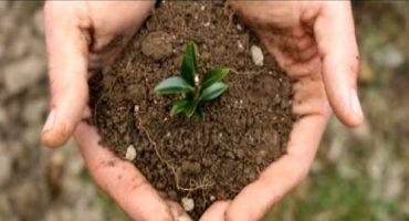 Earth Day, la Giornata Mondiale della Terra 2016