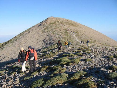 Monte Ida