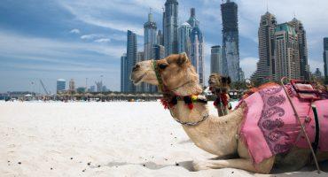 Emirates: offerta speciale per Dubai per le famiglie