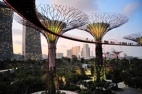 singapour-jardins-de-la-baie