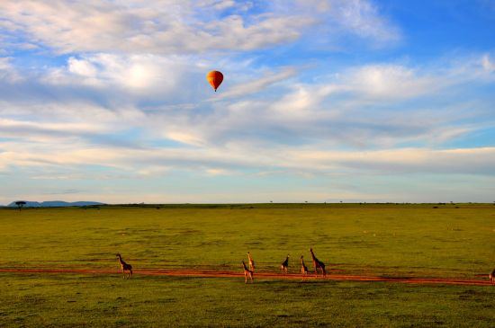 Hot_Air_Balloon_Safari_in_Maasai_Mara (1)