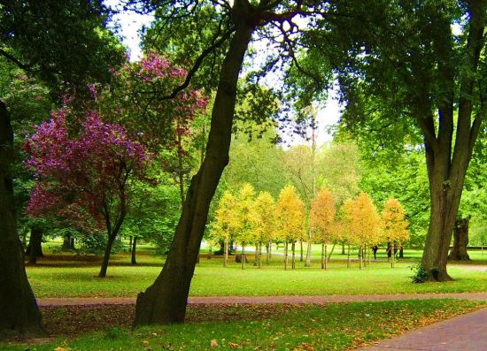 1024px-Bute_Park,_Cardiff